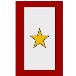Gold Service Flag